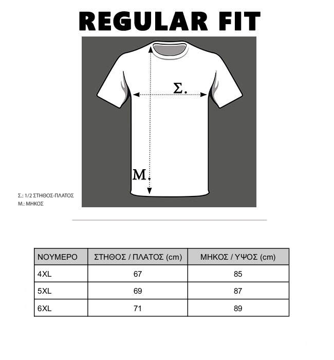 frank-tailor-polo-big-size-guide-131-06